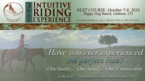 Intuitive Riding, Happy Dog Ranch, Littleton, CO