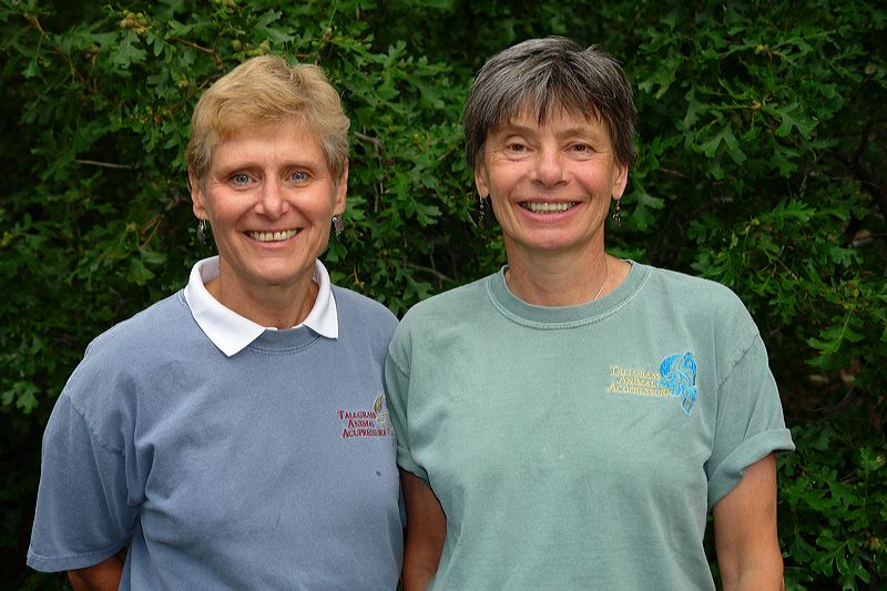 Nancy Zidonis & Amy Snow:  Co-founders of the Tallgrass Animal Acupressure Institute