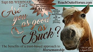 Are You As Good As Buck & Animal Communication for Skeptics Webinar Series