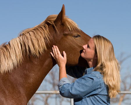 Join Anna in NY and CT for 3 weeks of horsemanship and animal communication